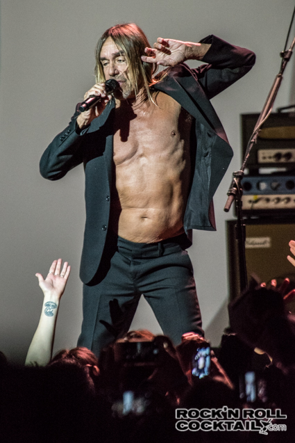 Iggy Pop photographed by Jason Miller-11