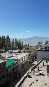 "The view from my hotel in Leh's open window was breathtaking. Crazy to look out and think ""Yup, those are the Himalayas!"""