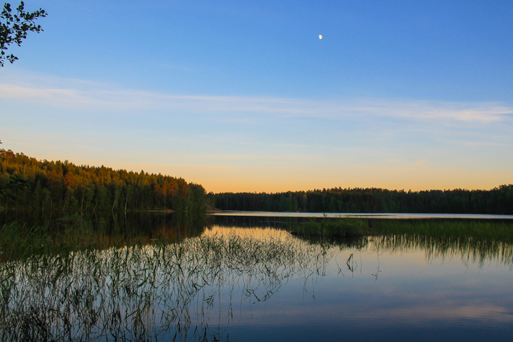 Finland The Wanderlust Bug 6