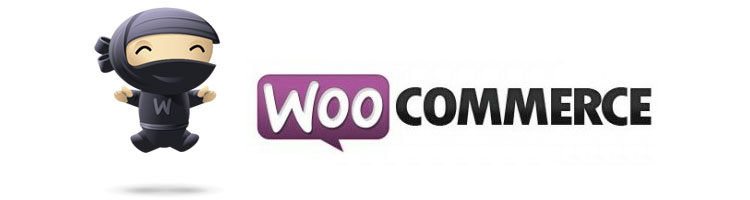 Woocommerce for your online store