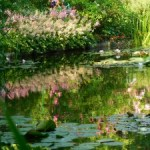 Dreams do come true…Monet's Gardens in Giverny, France