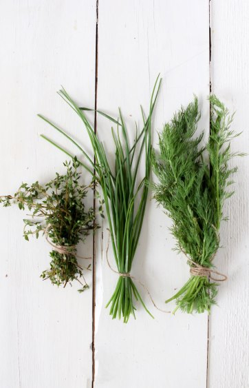herbs-opt