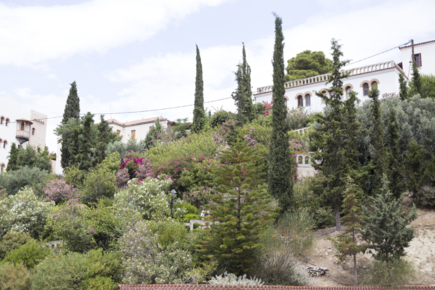 temple-apheae-aegina-monaster-greek-08