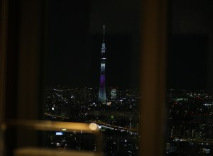 view of Tokyo skyline from the Mandarin Oriental Hotel