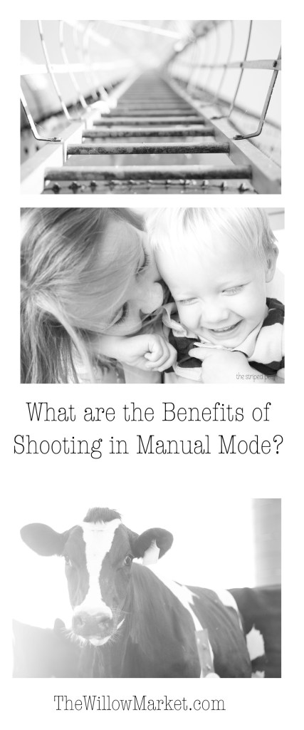 Why should you learn to shoot in manual mode. Learning to shoot in manual mode.