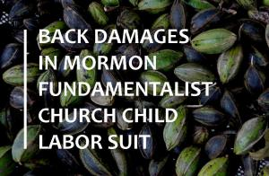 Mormon fundamentalist child labor