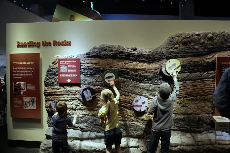 Museum TX 17a