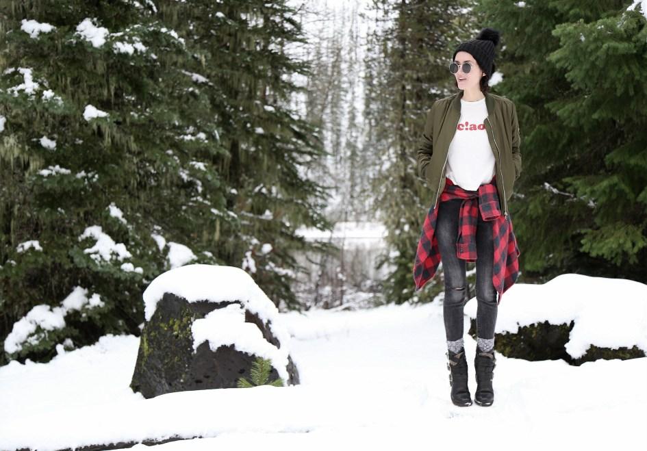 buffalo-snow-1a