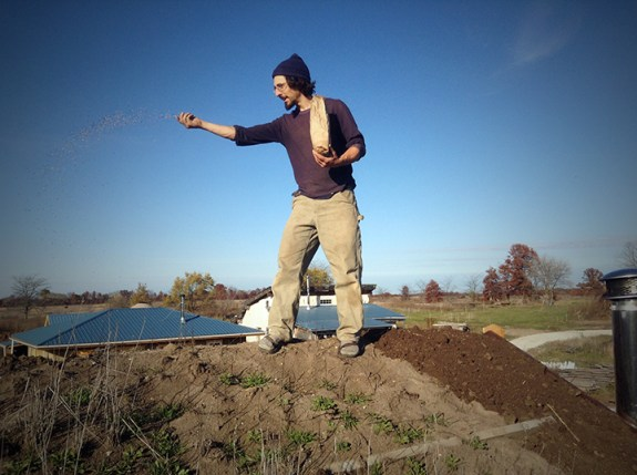 Spreading Seed: Living Roof