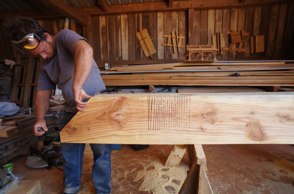 Kerf Cuts in a Timber