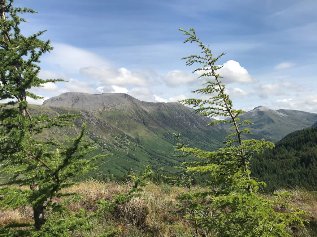 Ben Nevis from Cow Hill. Image: Violet Daniels