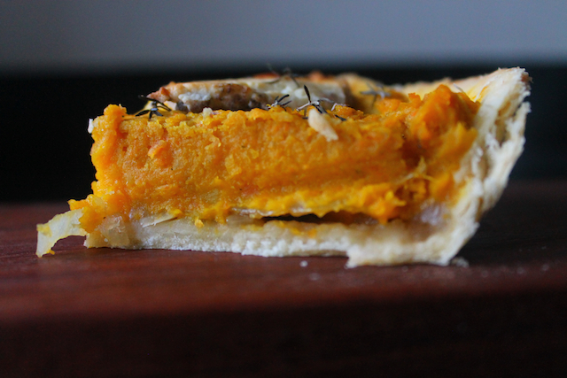 Pumpkin and goat cheese tart with roasted sweet onions