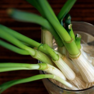 Waste not, want not – Spring Onions for Free