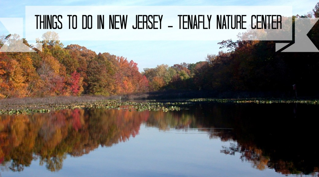 Tenafly Nature Center | Things To Do In New Jersey | #tenafly #nj #newjersey #bergencounty #naturecenters #nature #fieldtrips #kids #hiking
