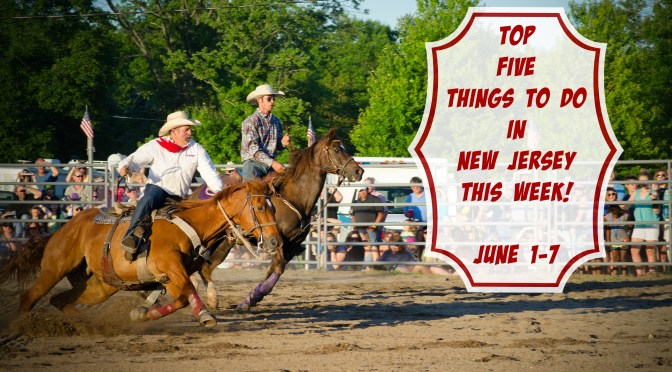 The Montgomery Rodeo top the list of things to do in New Jersey this week! Find out more about this event and others at www.thingstodonewjersey.com | #nj #newjersey #thingstodo #rodeo #events #montgomery #festivals #fairs #renaissance #barnegat bay #delawarebay #portnorris #islandheights #groundsforsculpture #hamilton #bordentown #familyfriendly
