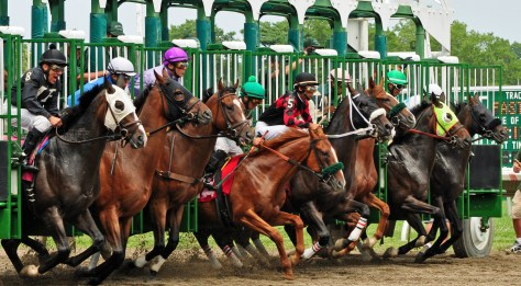 New Jersey is home to both thoroughbred and standardbred harness racing. | Monmouth Park NJ | horse racing in nj | horse racing in new jersey | nj horse racing | new jersey horse racing