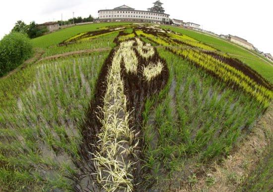 rice-art