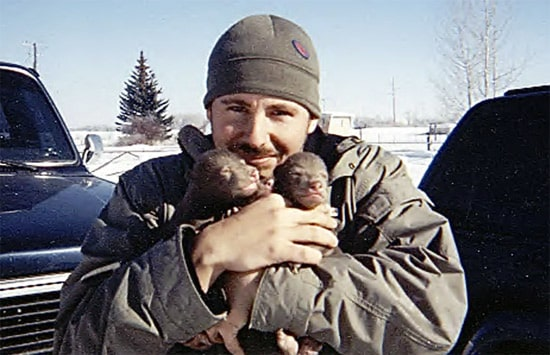 baby-bears