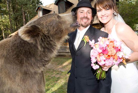 wedding-with-bear