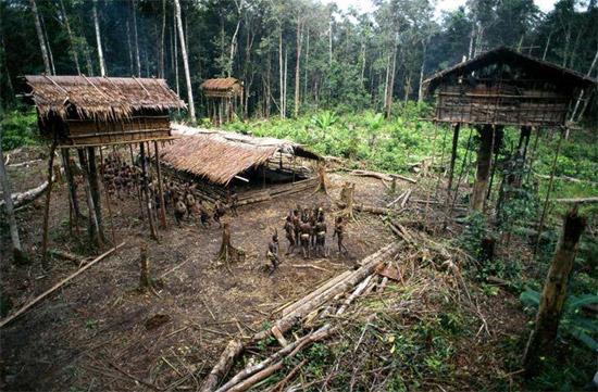 tree-village