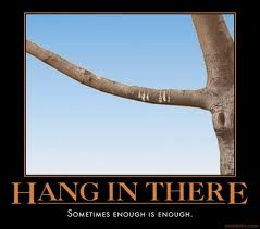 """Demotivational Posters and the """"Hang in There"""" Cat Poster"""