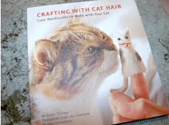 Strange Books and Crafting With Cat Hair