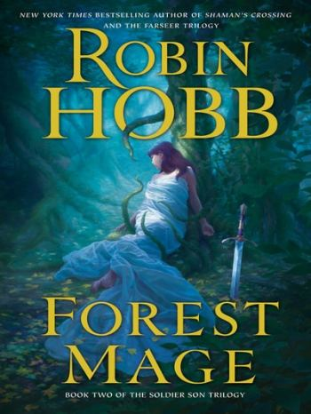 The top best fantasy book series include the novels by Robin Hobb.
