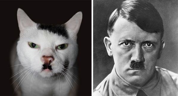 Celebrity Lookalikes We Never Thought Of: Hitler