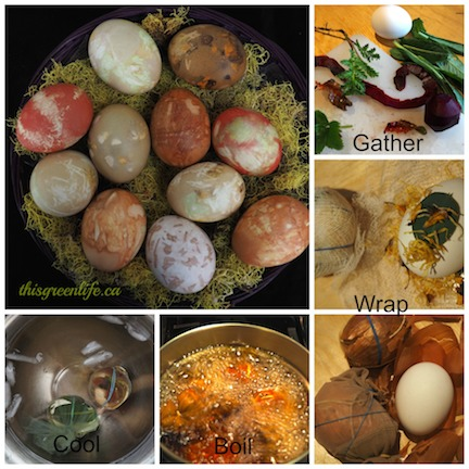 dyeing easter eggs collage