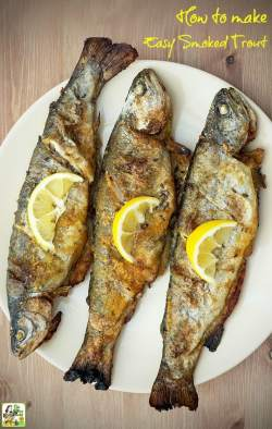 Glancing Learn How To Make Smoked Trout Easier Than You Think If You How To Make Easy Smoked Trout Grilled Rainbow Trout Recipes Foil Grilled Trout Marinade Recipes