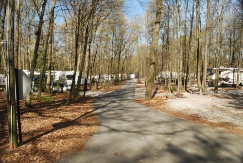 Campground and campsites