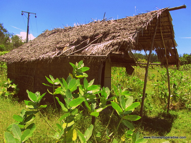Grass Shack on Gili Meno, Gili Islands
