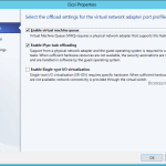 Virtual Adapter Port Profile 02