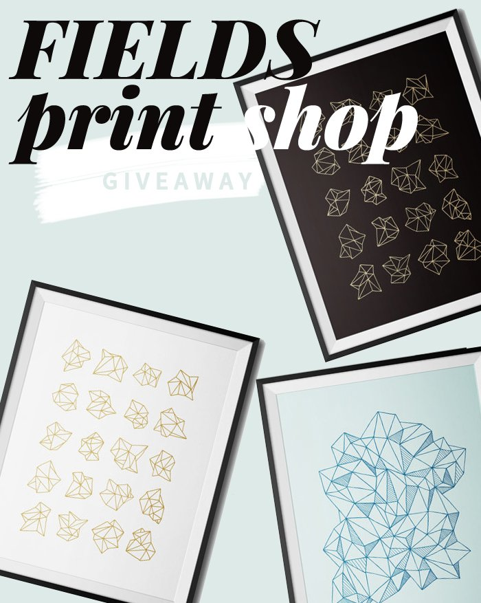Minimalist screen prints by FIELDS Print Shop   Giveaway on Thou Swell