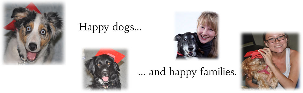 Three-Dogs-Homepage-Banner