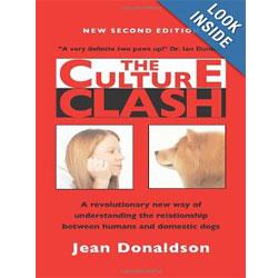 The-Culture-Clash