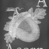 Digital Goodie Day - Autumn Chalkboard Art - A is for Acorn