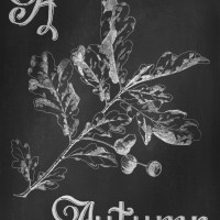 Digital Goodie Day – Autumn Chalkboard Art – A is for Autumn