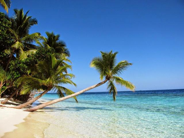Sunny Maldives!