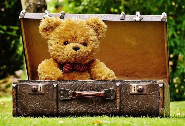 teddy-bear-in-luggage