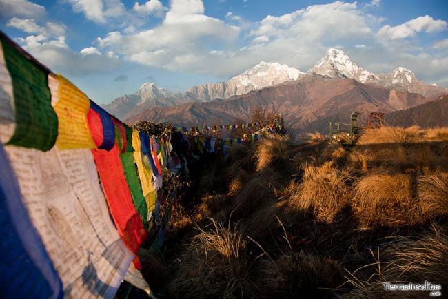 trekking de poon hill nepal
