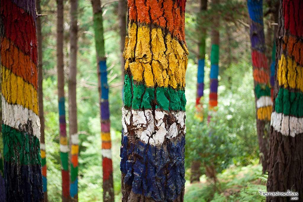El Bosque Pintado de OMA: Un lienzo en la naturaleza