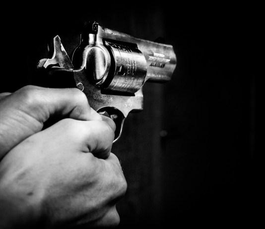 pistol, revolver