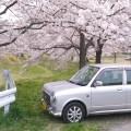 drive_japan