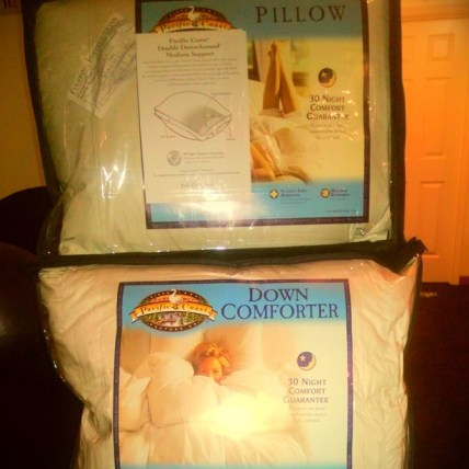 Pillow and Down Comforter