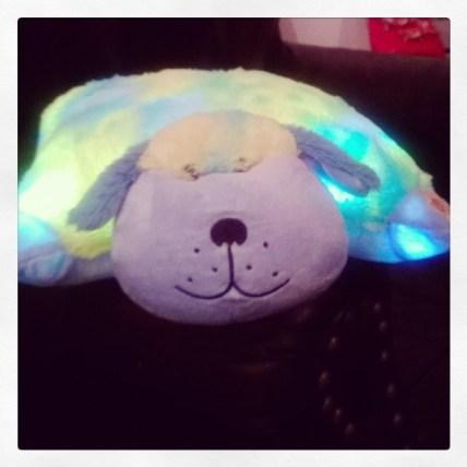 Dog Glow Pet
