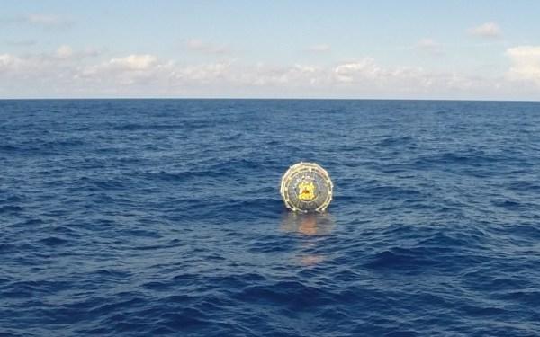 The Bermuda Bubble Diaries