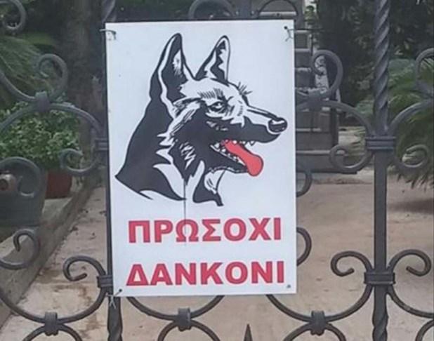PinakidaSkylosAnortografi-620x487