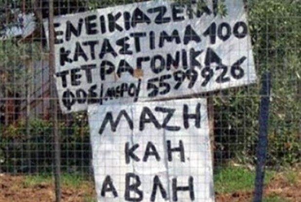 orthografika7