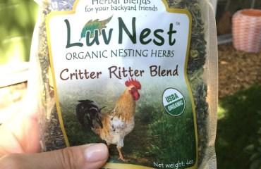 Tillys-Nest-critter-ritter2
